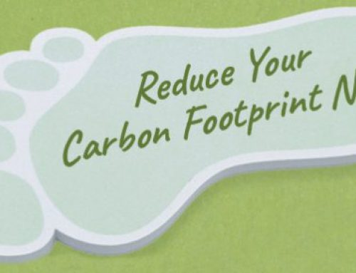 One Way To Reduce Your Companies Carbon Footprint…