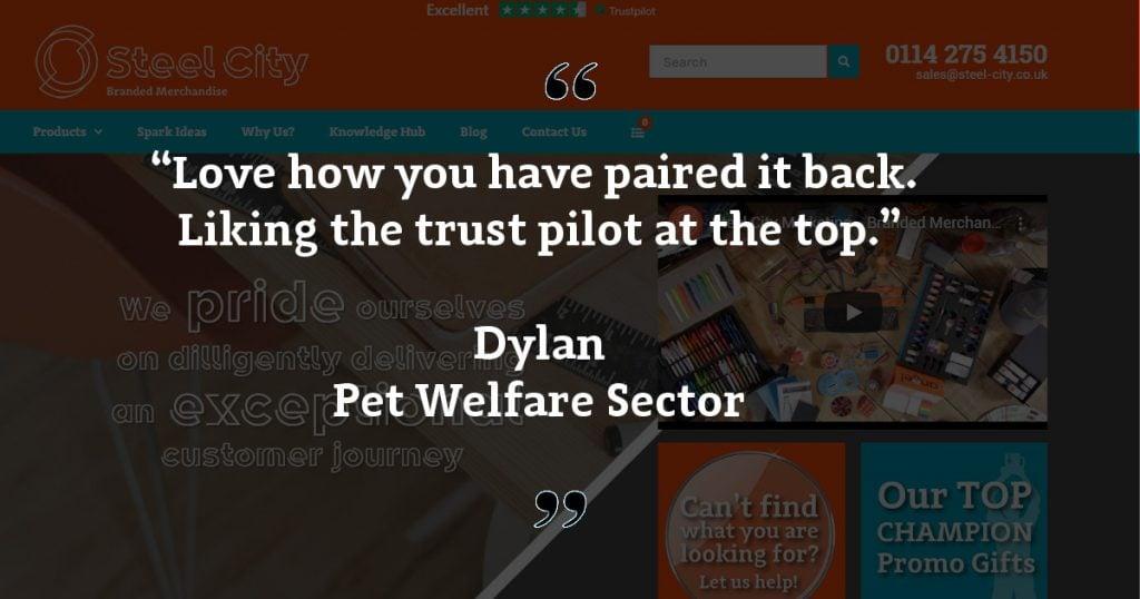 Website Feedback Dylan